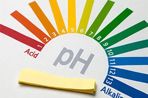 pH CONTROL  -
